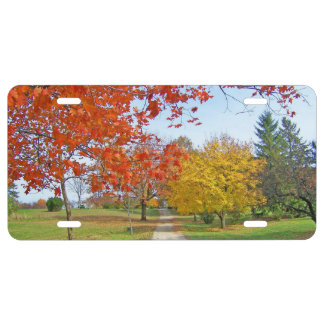 Fall Autumn Scene License Plate