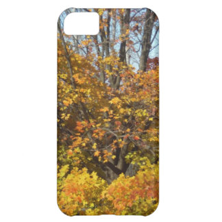 Fall Autumn Scenes Trees Leaves iPhone 5C Cover