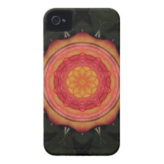 Fall Bloom iPhone 4/4S Cases -Barely There