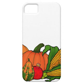 fall border iPhone 5 cover