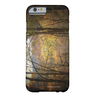 Fall Cell Phone and Ipad case