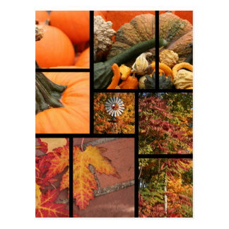 Fall Collage Postcard