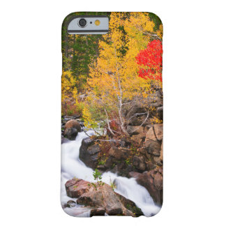 Fall color along Bishop Creek, CA Barely There iPhone 6 Case