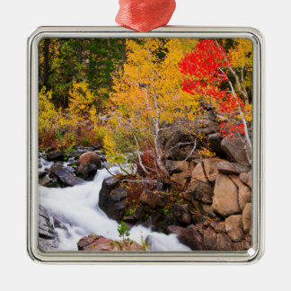 Fall color along Bishop Creek, CA Metal Ornament