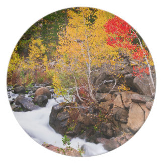 Fall color along Bishop Creek, CA Party Plate