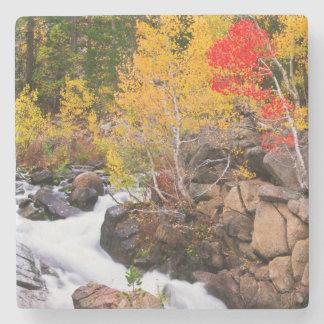 Fall color along Bishop Creek, CA Stone Beverage Coaster