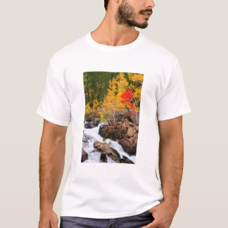 Fall color along Bishop Creek, CA T-Shirt