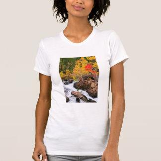 Fall color along Bishop Creek, CA T-Shirt