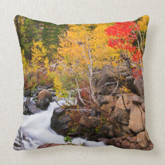 Fall color along Bishop Creek, CA Throw Pillow