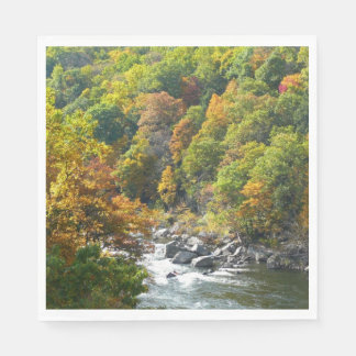 Fall Color at Ohiopyle State Park Disposable Napkins