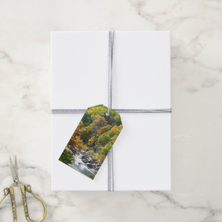 Fall Color at Ohiopyle State Park Gift Tags