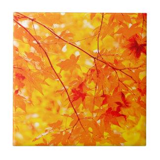Fall Color Bright Orange Ceramic Tile