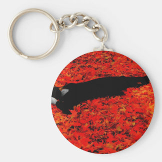 Fall Color! Keychain