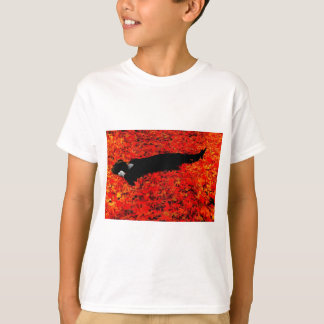 Fall Color! T-Shirt
