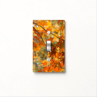 Fall Color Tree Leaves Nature Light Switch Cover