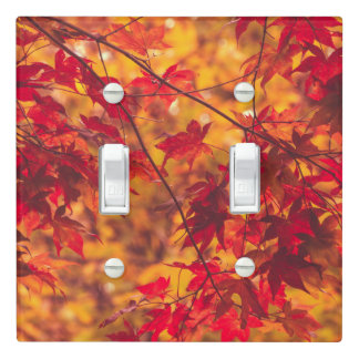 Fall Color Tree Leaves Red Nature Light Switch Cover