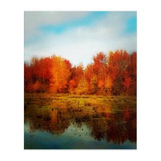 Fall Colors Acrylic Wall Art