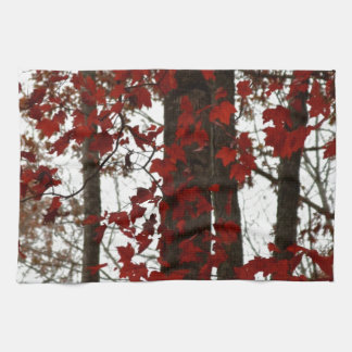 Fall Colors Autumn Red | Canadian Maple Leaves Kitchen Towel