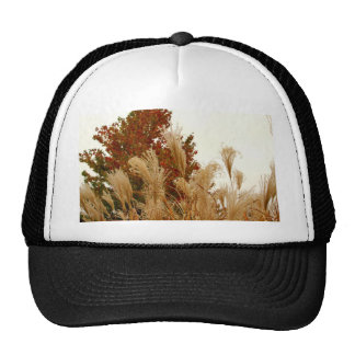 Fall Colors Autumn Season Nature Photography Hat