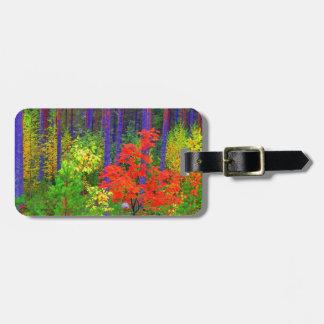Fall colors bag tag