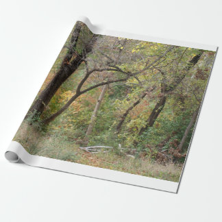 Fall Colors in a Forest Wrapping Paper