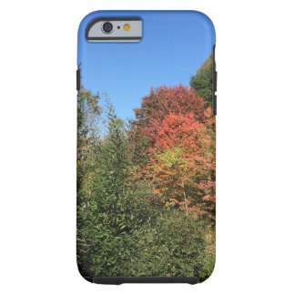 Fall Colors in Maine Phone Case - Frost Hill Farms