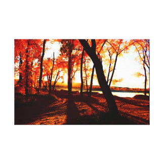 Fall colors in the forest by the Missouri River Canvas Print