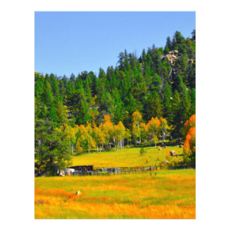 Fall colors in the Rockies Letterhead Design