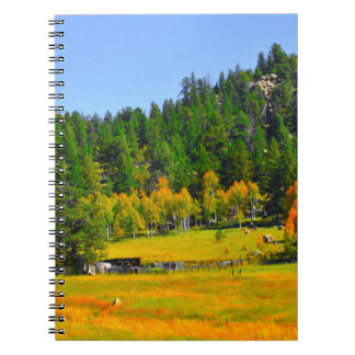 Fall colors in the Rockies Notebook