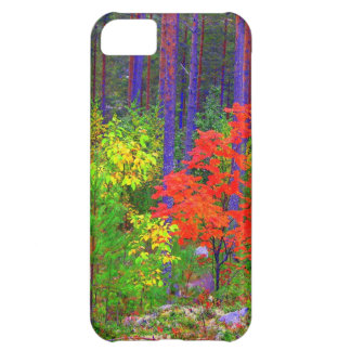 Fall colors iPhone 5C cover