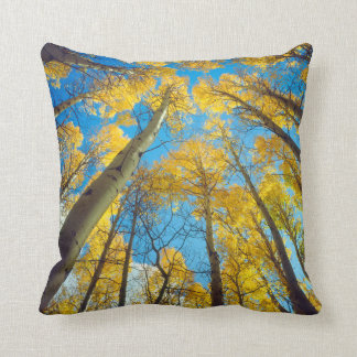 Fall colors of Aspen trees 2 Throw Pillow