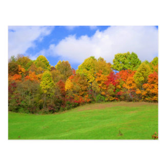 fall colors postcard