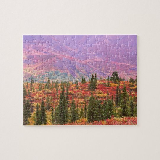 Fall colour in Denali National Park Jigsaw Puzzle