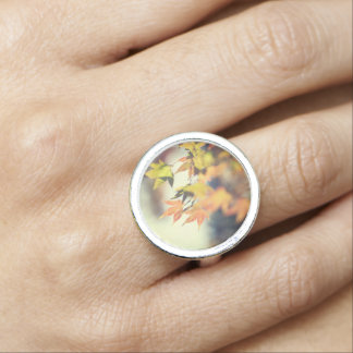 fall colour ring