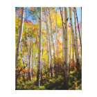 Fall colours of Aspen trees 5 Canvas Print