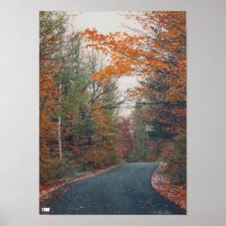 Fall Country Lane Canvas Gloss Print