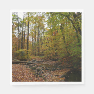 Fall Creek at Laurel Hill State Park Paper Napkin