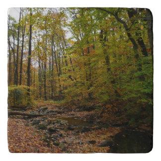 Fall Creek at Laurel Hill State Park Trivet