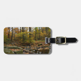 Fall Creek with Reflection at Laurel Hill Park Luggage Tag