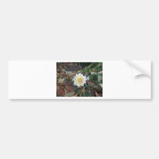 Fall Flower Bumper Sticker