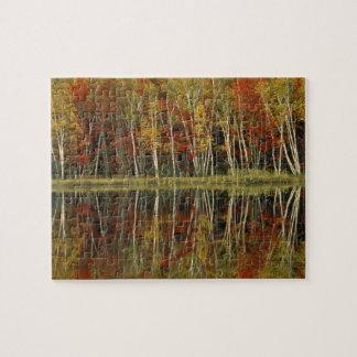 Fall Foliage and Birch Reflections; Hiawatha Jigsaw Puzzle