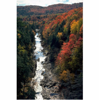 Fall foliage at Queechee Gorge, Queechee, Vermont, Standing Photo Sculpture