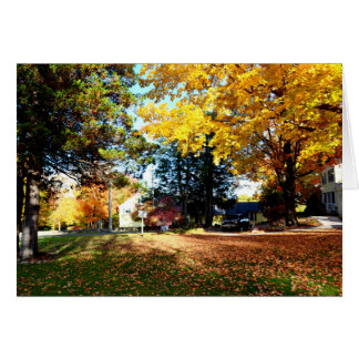 Fall Foliage - Blank Greeting Card