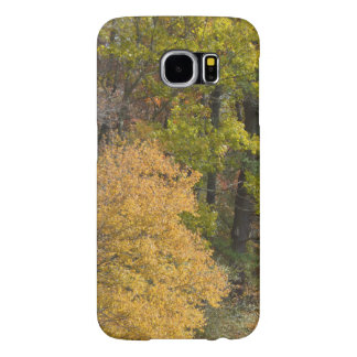 Fall Foliage Cell Phone Case