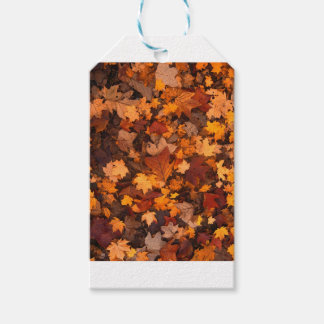 Fall-foliage Gift Tags