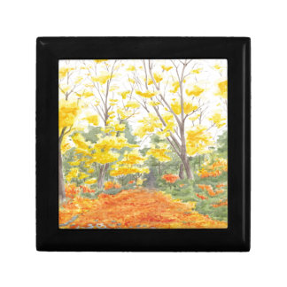 Fall Foliage in Adlershof Gift Box
