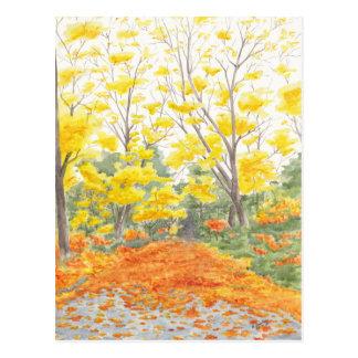 Fall Foliage in Adlershof Postcard