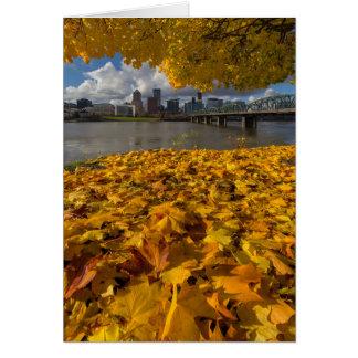Fall Foliage in Portland Oregon City Card