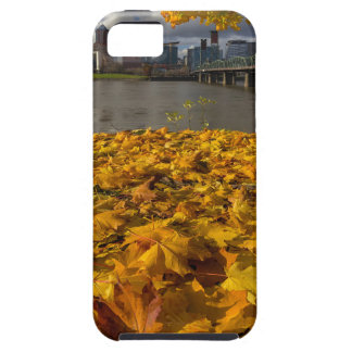 Fall Foliage in Portland Oregon City Case For The iPhone 5