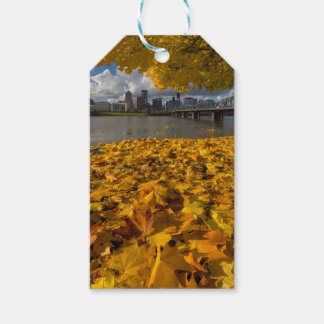 Fall Foliage in Portland Oregon City Gift Tags
